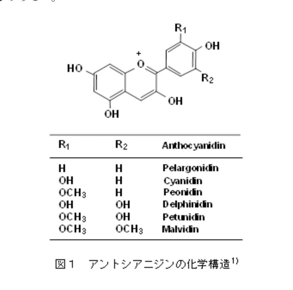 アントシアニジンの構造