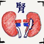 Kidony 腎